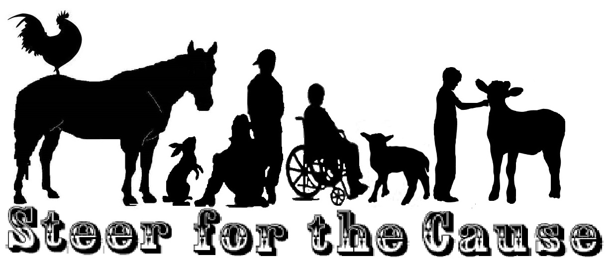 steer for the cause logo